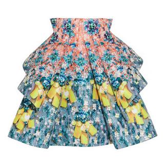 MARY KATRANTZOU Structured printed satin-gabardine skirt $6,200