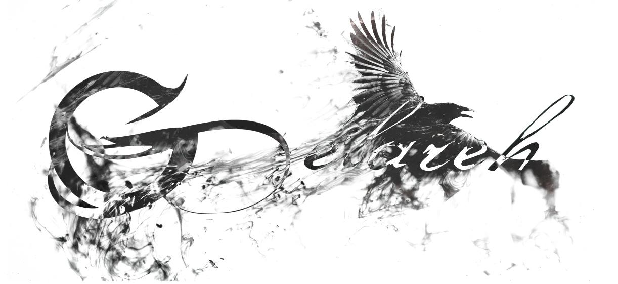 Gelareh Bird Banner.jpg
