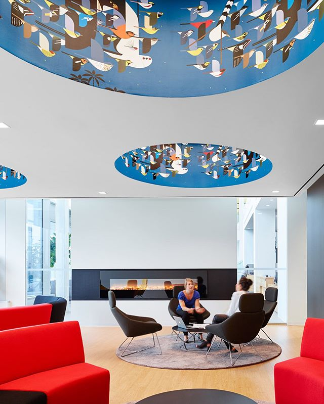 I hear some chirping! Charlie Harper illustration in the circular ceiling features. TJX Canada HQ main lounge . . #stevetsaiphotography #stevetsai #commercialinteriors #corporatedesign #officedesign #architecturalphotographer #interiordesigner #interiordesign #architecture #architecturephotography #architecturephotographer #interiorphotography #interiorphotographer #decor #architecturalphotography #photographer #officedesign #moderndesign  #interiorphotographer #Toronto #TorontoPhotographer #officeinterior #phaseonephoto #mediumformat #digitalback #arcaswiss #techcam @figure3design