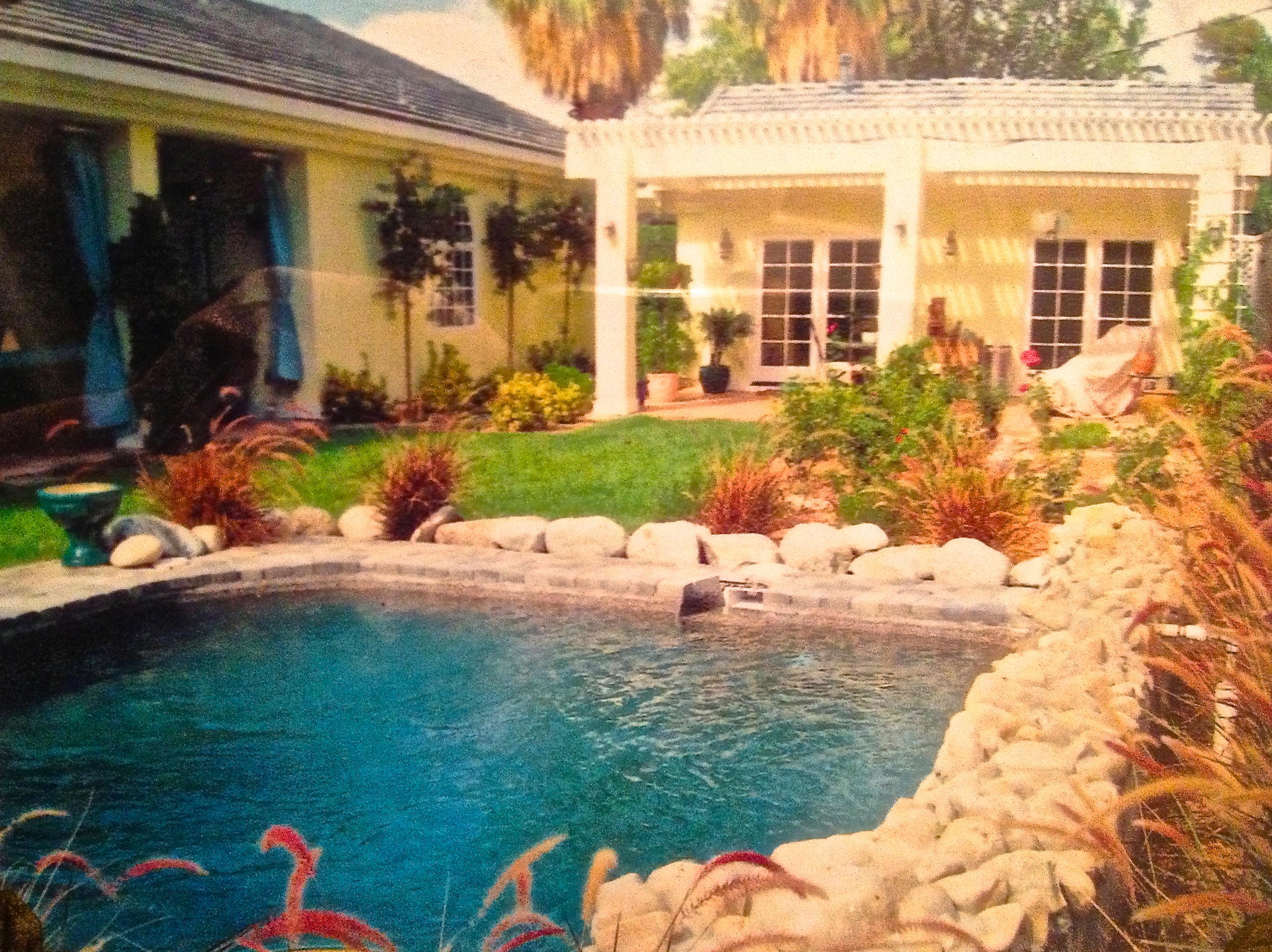 Inviting dipping pool and tropical plants