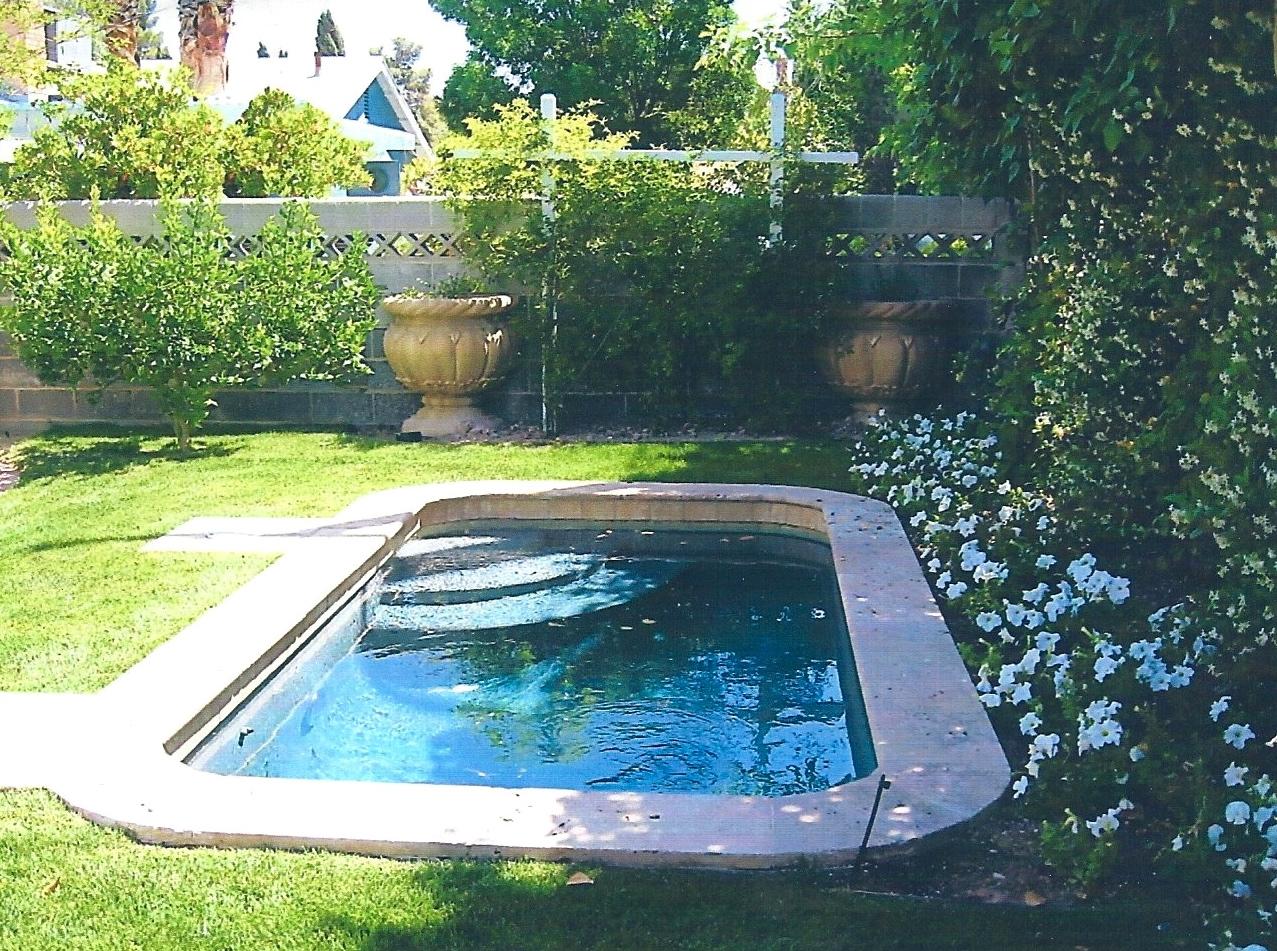 Inviting dabbling pool