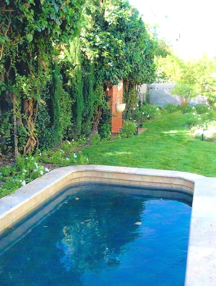 Dabbling pool and fountain