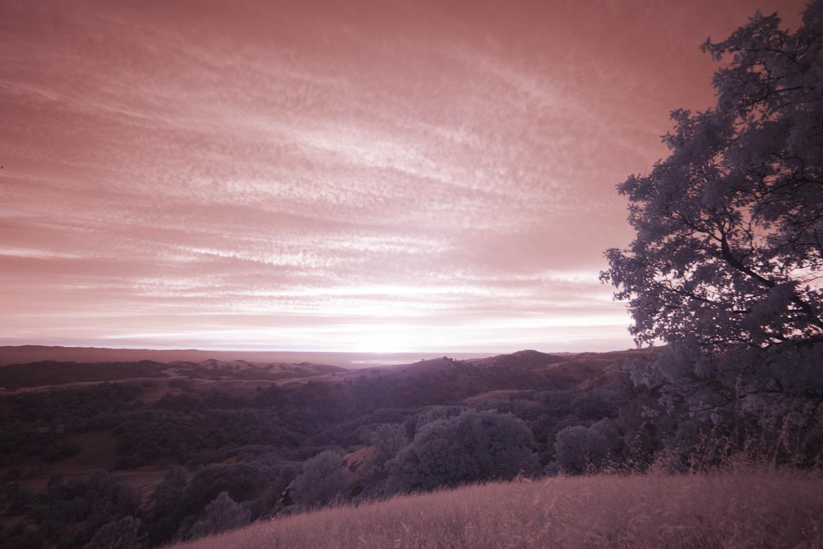 IR-sunset_6417.jpg