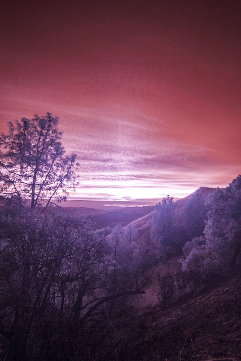 IR-sunset_6420.jpg