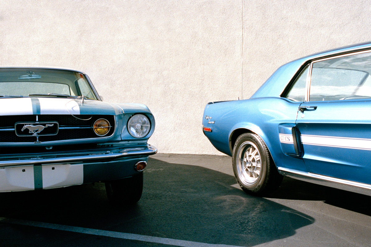 Car-Lovers-3.jpg