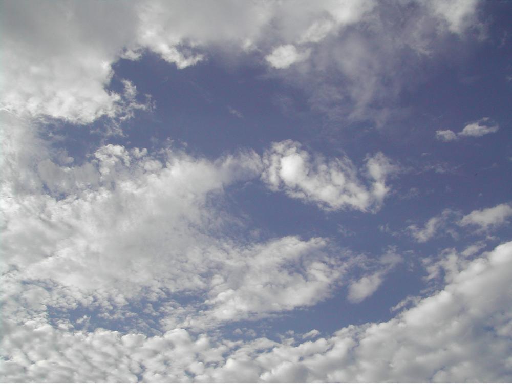 2007 SKY. Los Angeles, CA