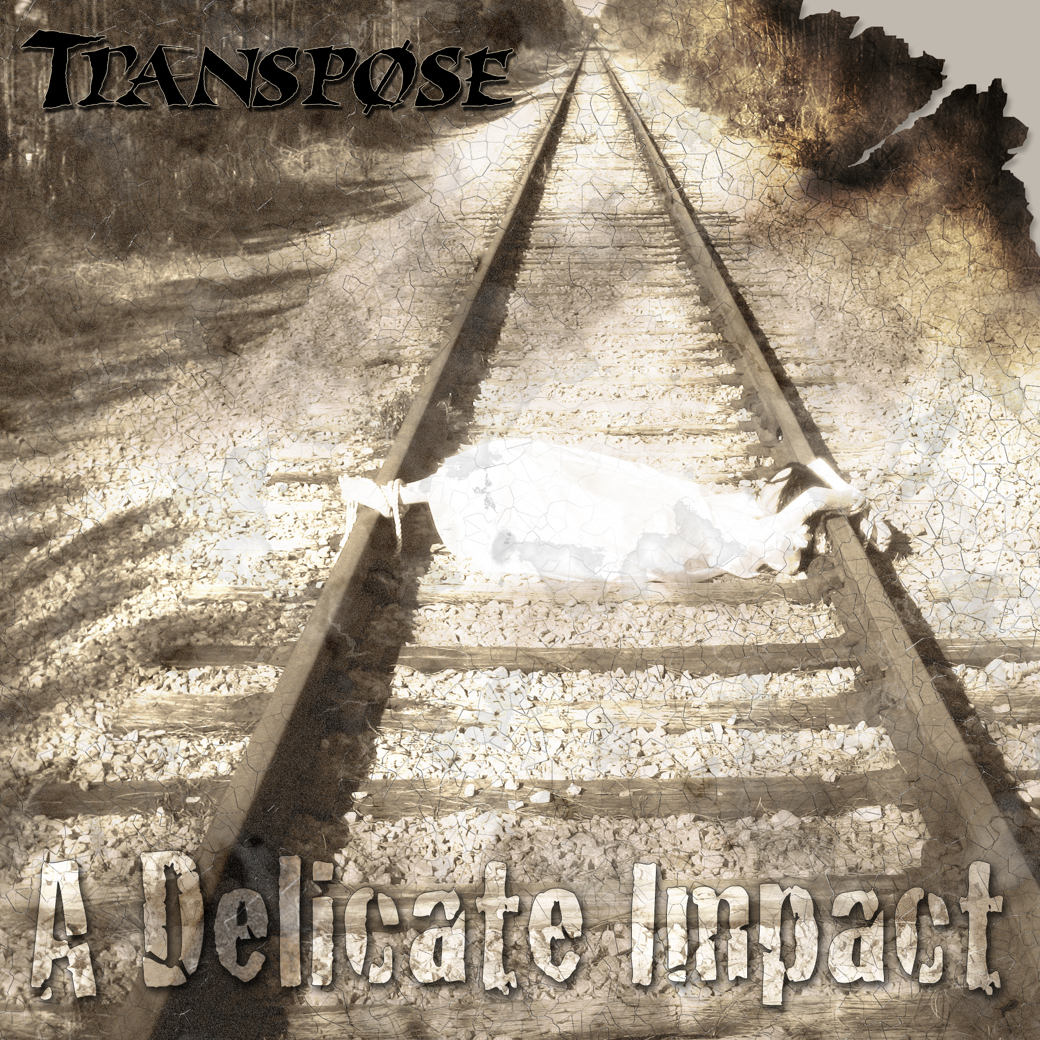"Transpose's debut album, ""A Delicate Impact,"" combines the heaviness of metal-core, progressive, and post-hardcore .  The single from the album, ""Only The Dead Go Free,"" was played on numerous FL based radio stations throughout the summer of 2008.  Order album / More info>"