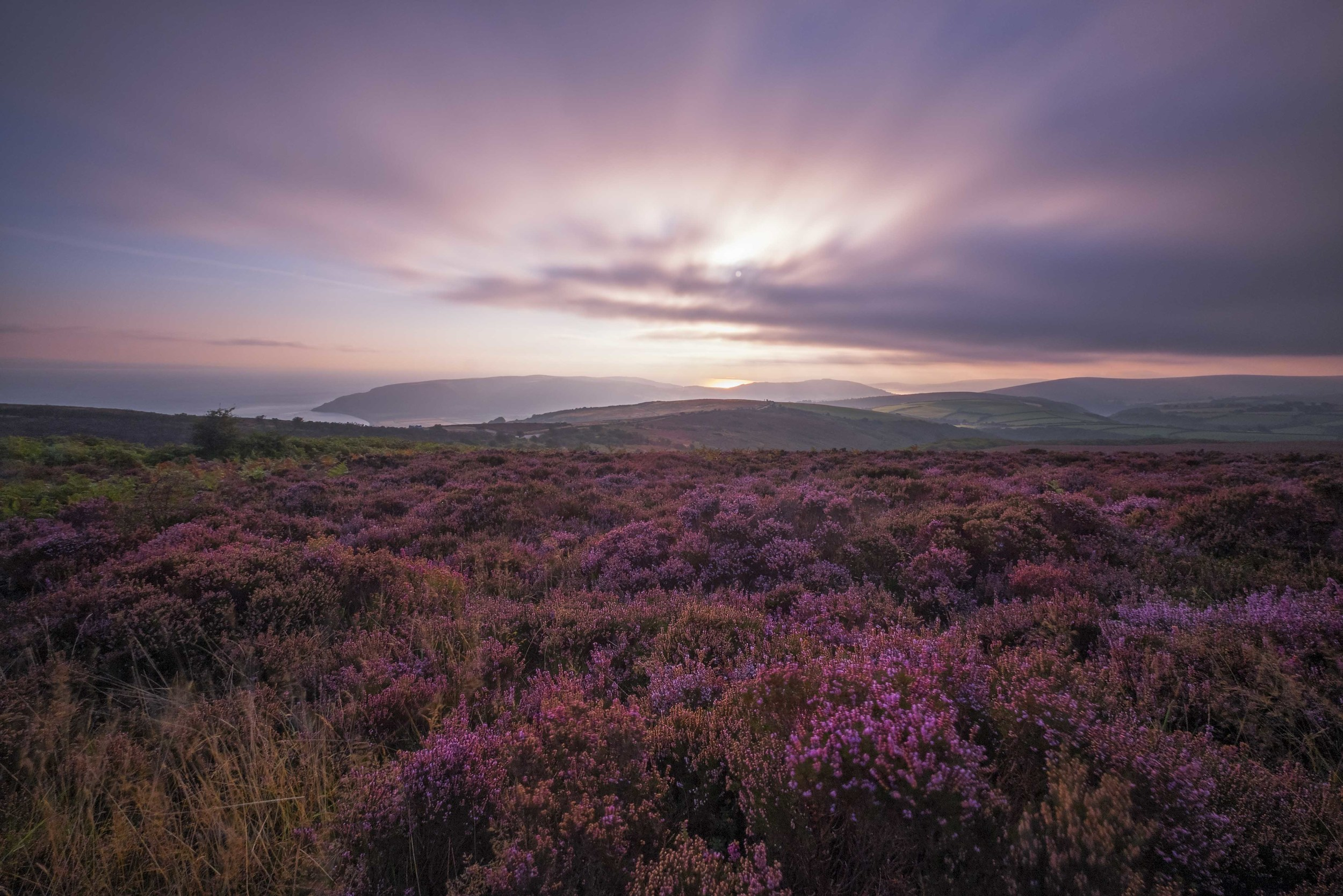 """Purple Haze"" - Exmoor, Devon, England Fujifilm X-T1 + 10-24mm f/4 OIS @ f/10. 20 Seconds."