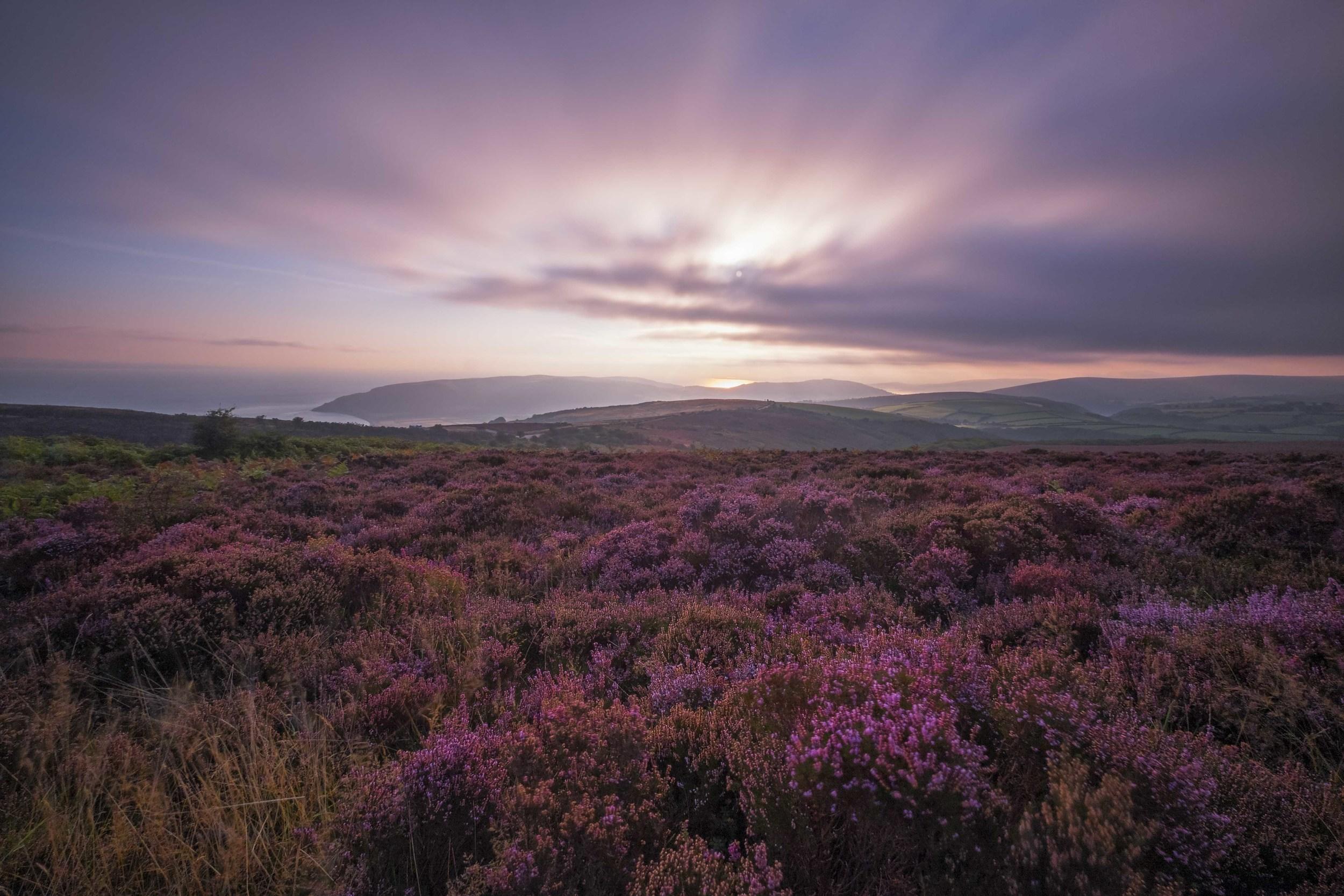 """Purple Haze"" - Exmoor, Devon, England Fujifilm X-T1 + 10-24mm f/4 OIS @ f/10. 20 Seconds."
