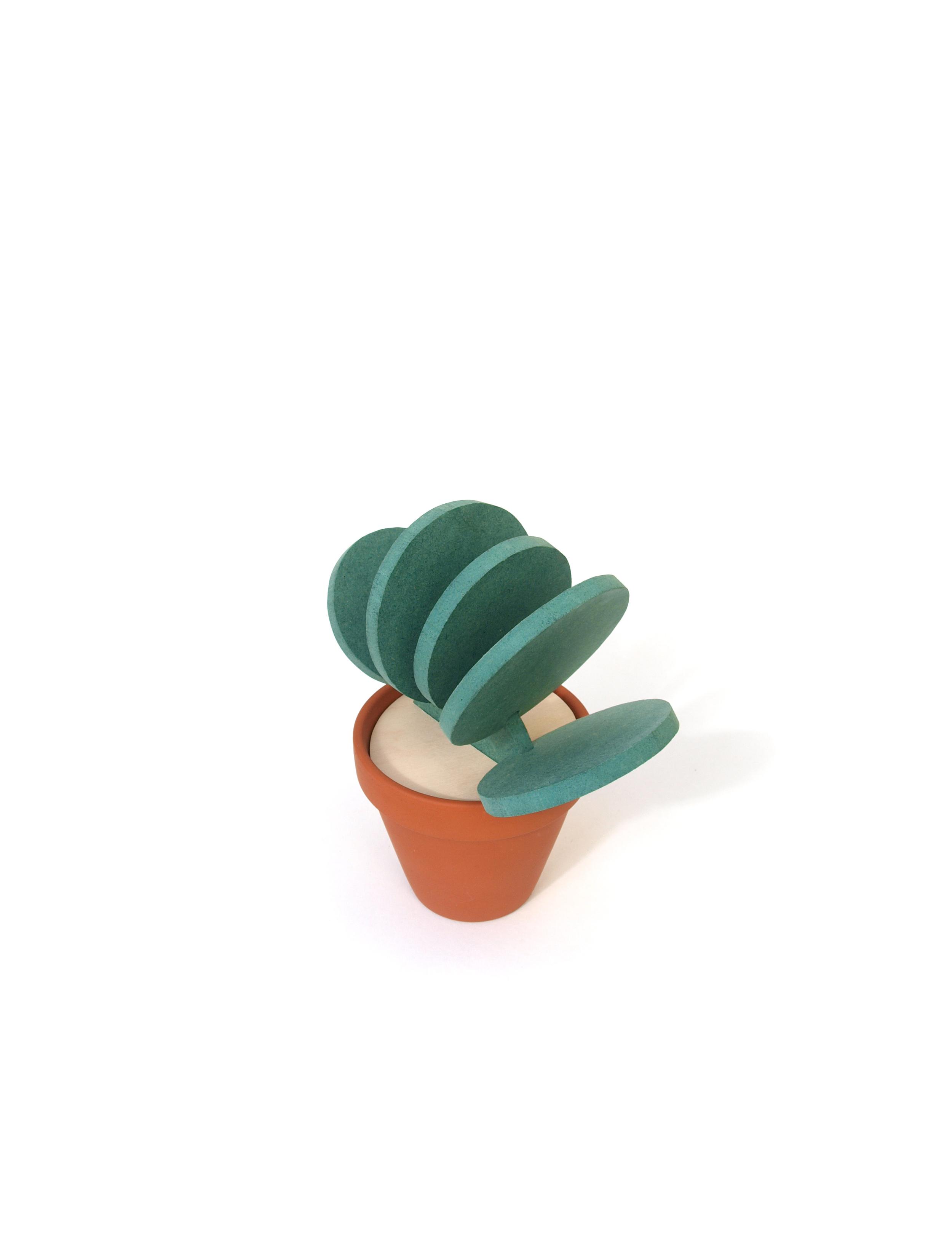 Cacti10.jpg