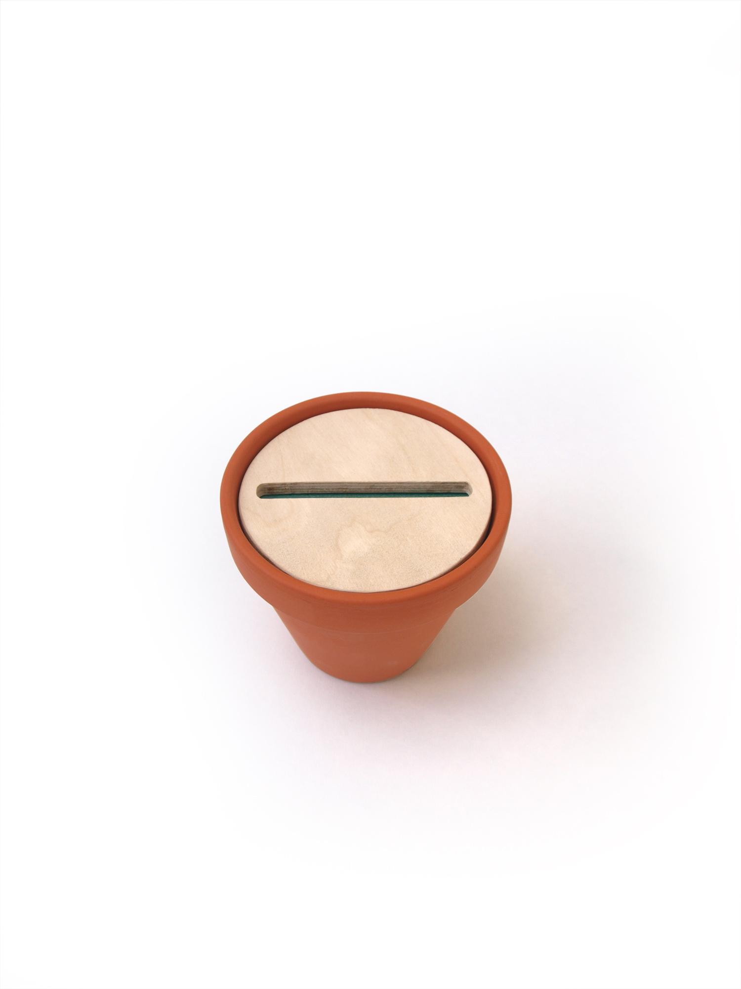 Cacti6.jpg