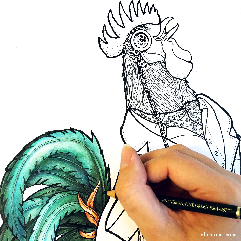 dandy cock wip.jpg