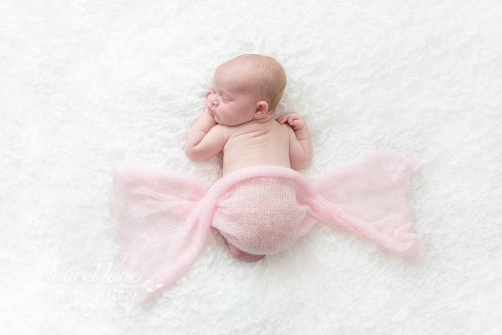 A newborn baby portrait captured in studio by Laurel Lane Photography, a photographer based in Macclesfield, Cheshire of a babyin tummy pose with a pink wrap