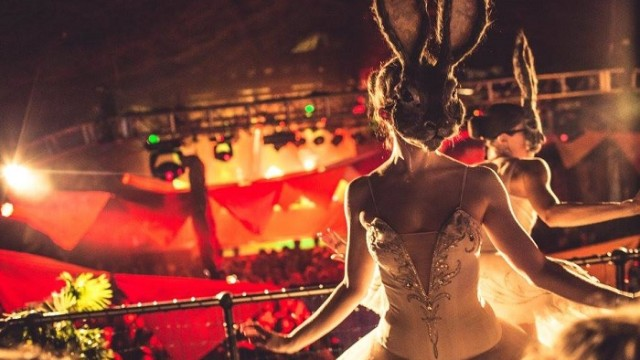 Circus & Cabaret Production -