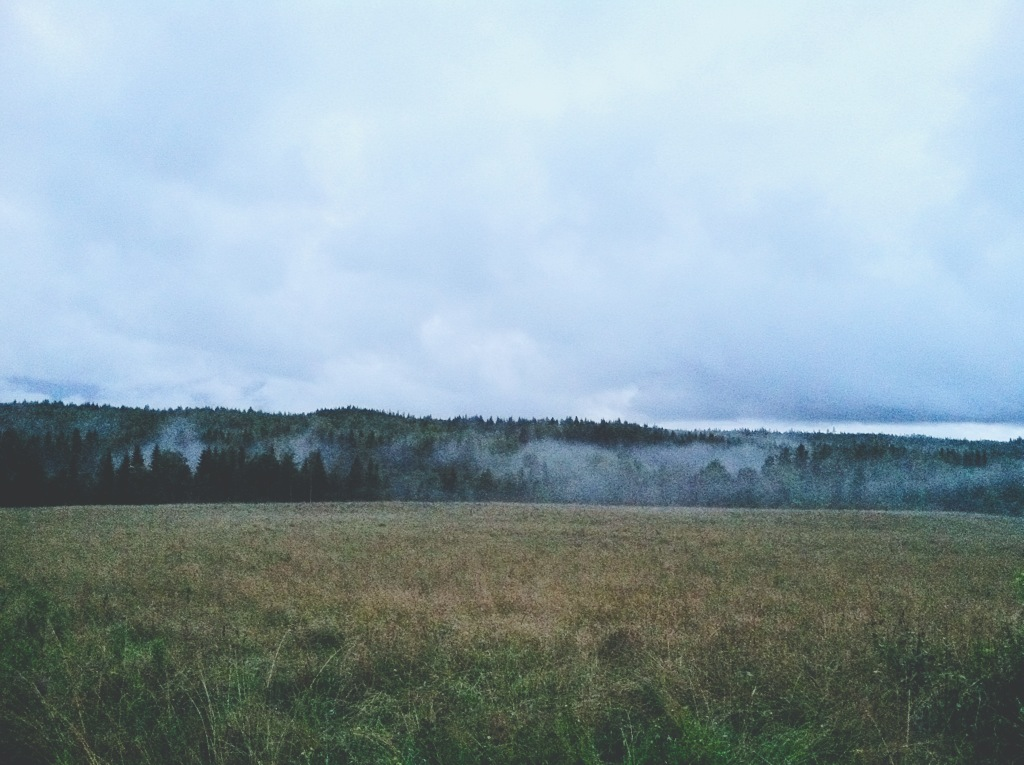 SwedenField