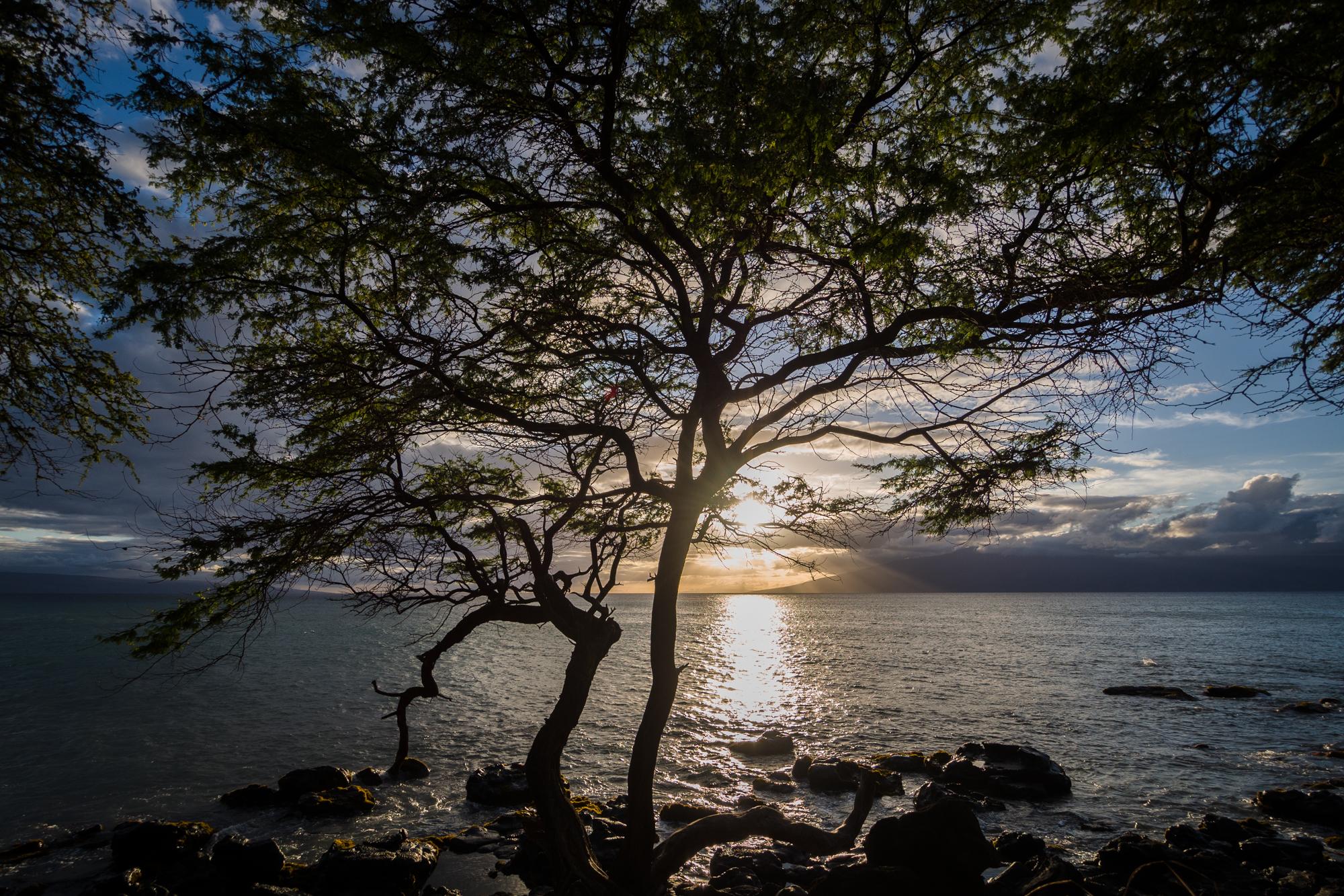 Hawaii-Maui_6.4.13-50_pp.jpg