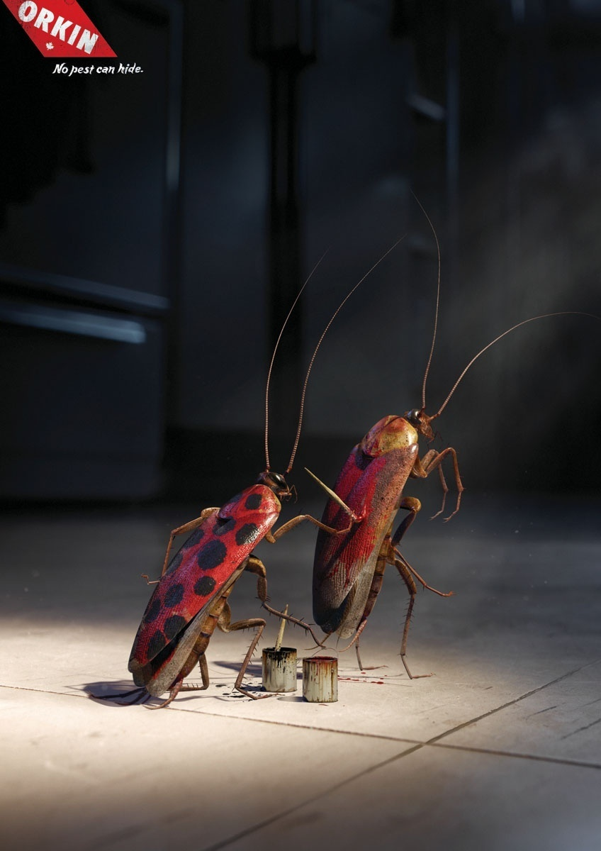Orkin Cockroaches