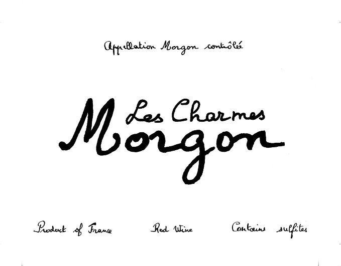 morgon-lescharmes-website.jpg