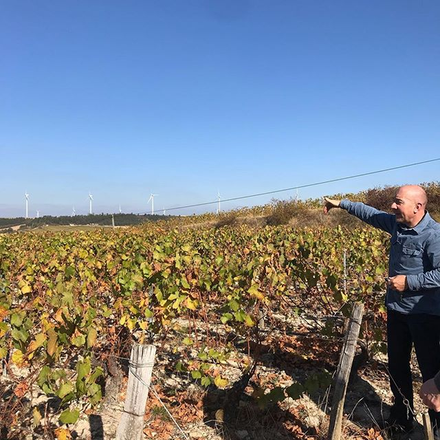 Olivier Morin and his beautiful Chitry 'Bel-Air' view ⛰. Be ready for his delicious 'oyster juice' aligoté from soft kimmeridgian chalky soil this summer 🤙