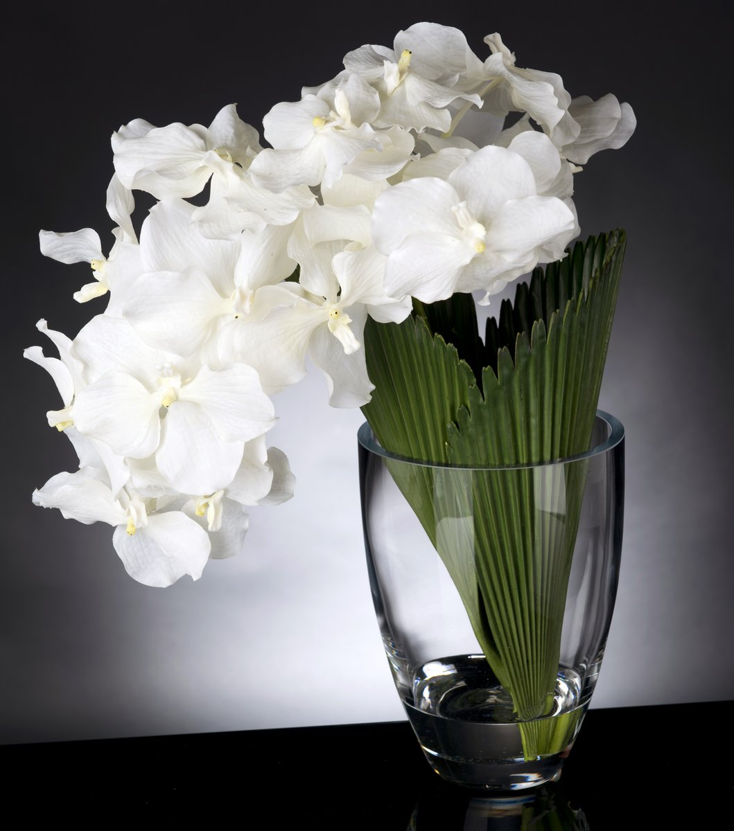 Floral arrangements by VG New Trend - Vase Orchid Palmitos - Masha Shapiro Agency.jpg
