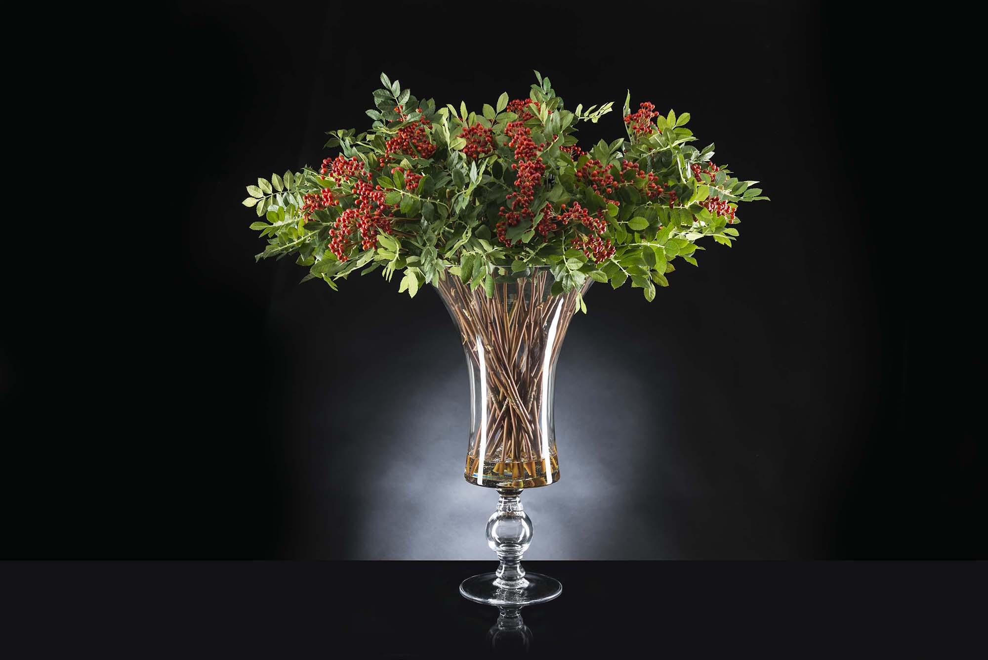 Interiors Advent Calendar - VG New Trend Eternity Bowl Red Berries via Masha Shapiro Agency UK.jpg