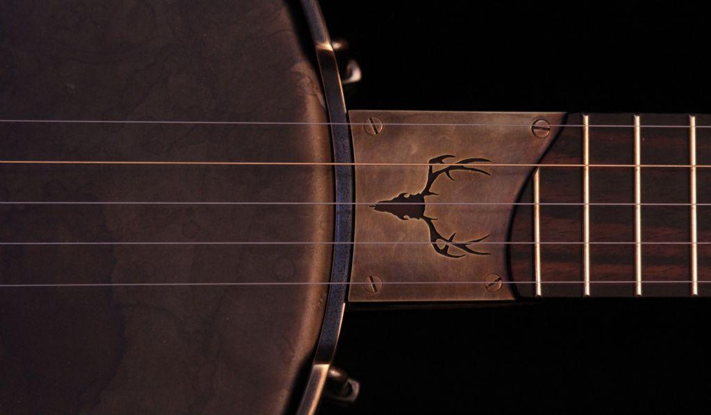 Jason personal banjo - 09.jpg