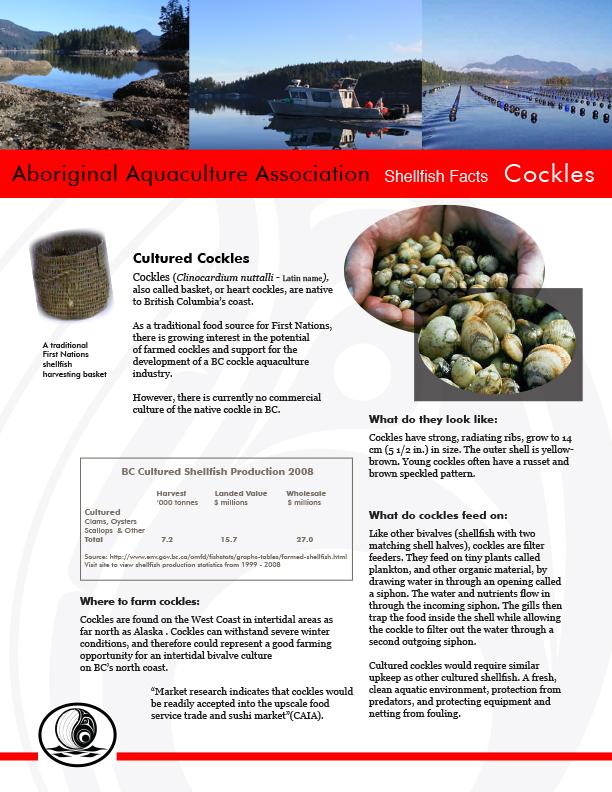 AAA Cockles Fact Sheet Final - pg1.jpg