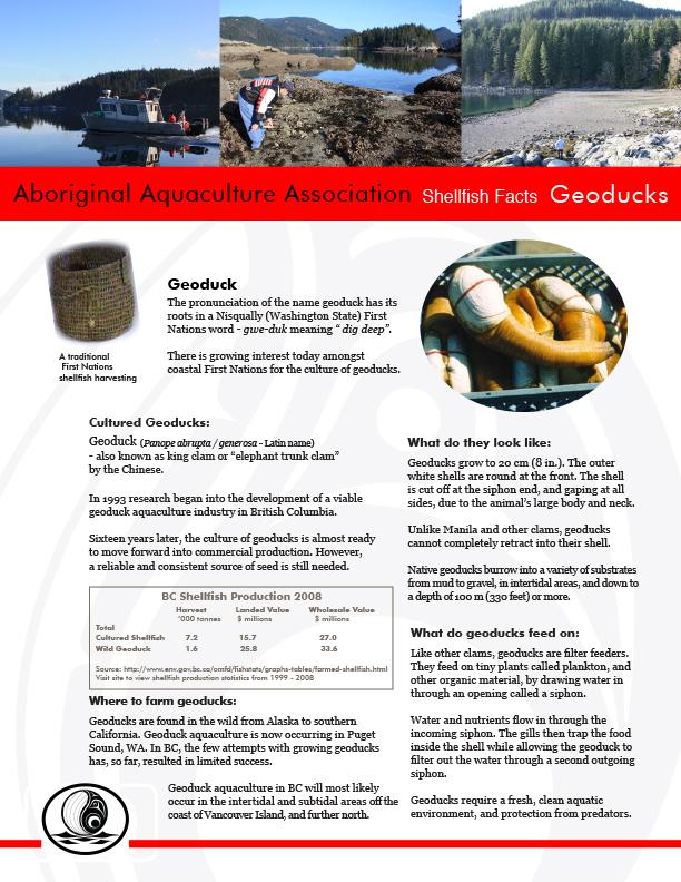 AAA Geoducks Fact Sheet Final - pg1.jpg