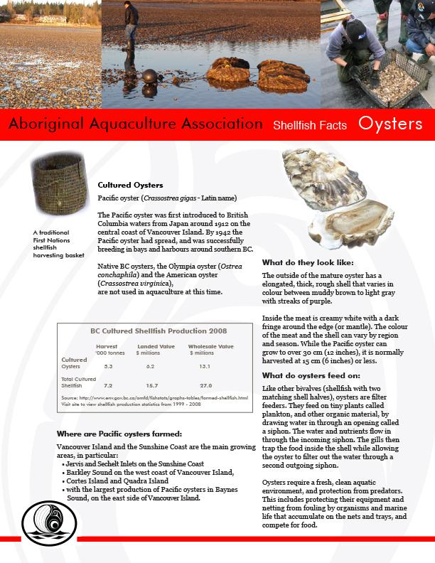 AAA Oysters FactSheet Final - pg1.jpg