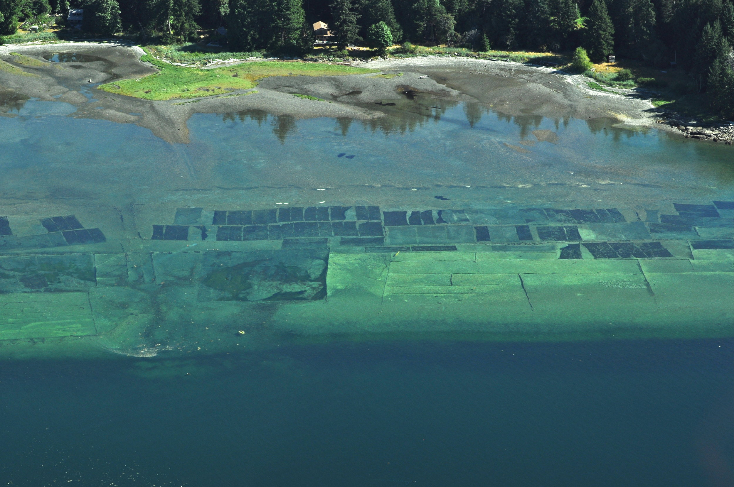Aquaculture Predator Nets West Side Denman Island.jpg