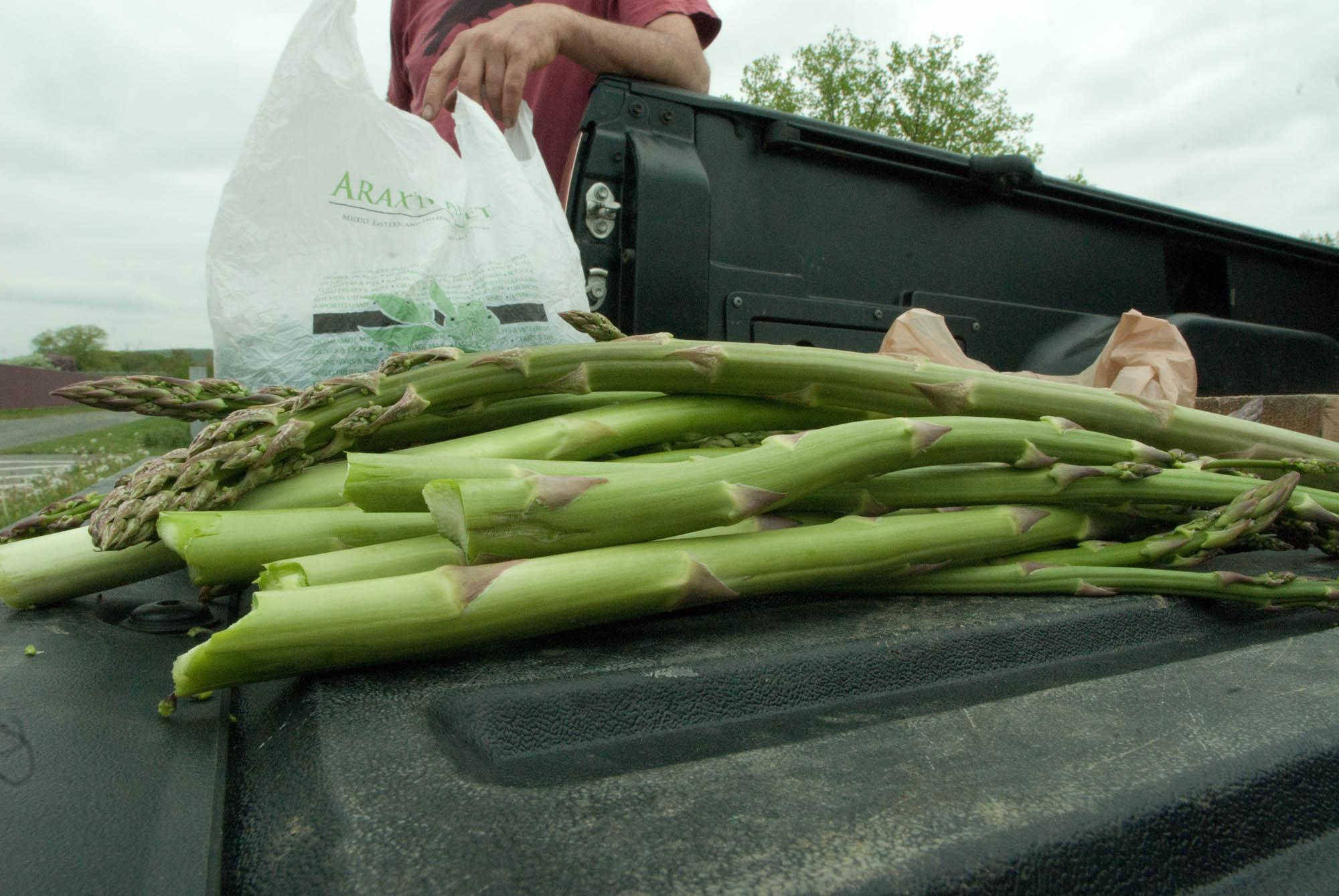 asparagus-5 copy.jpg