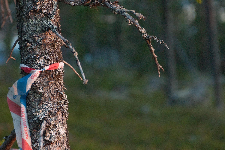 Sweden-2.jpg