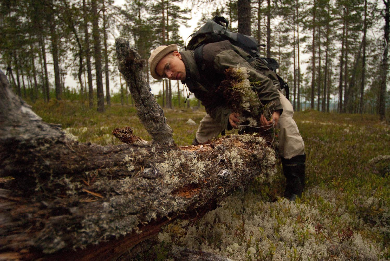 Sweden-7.jpg
