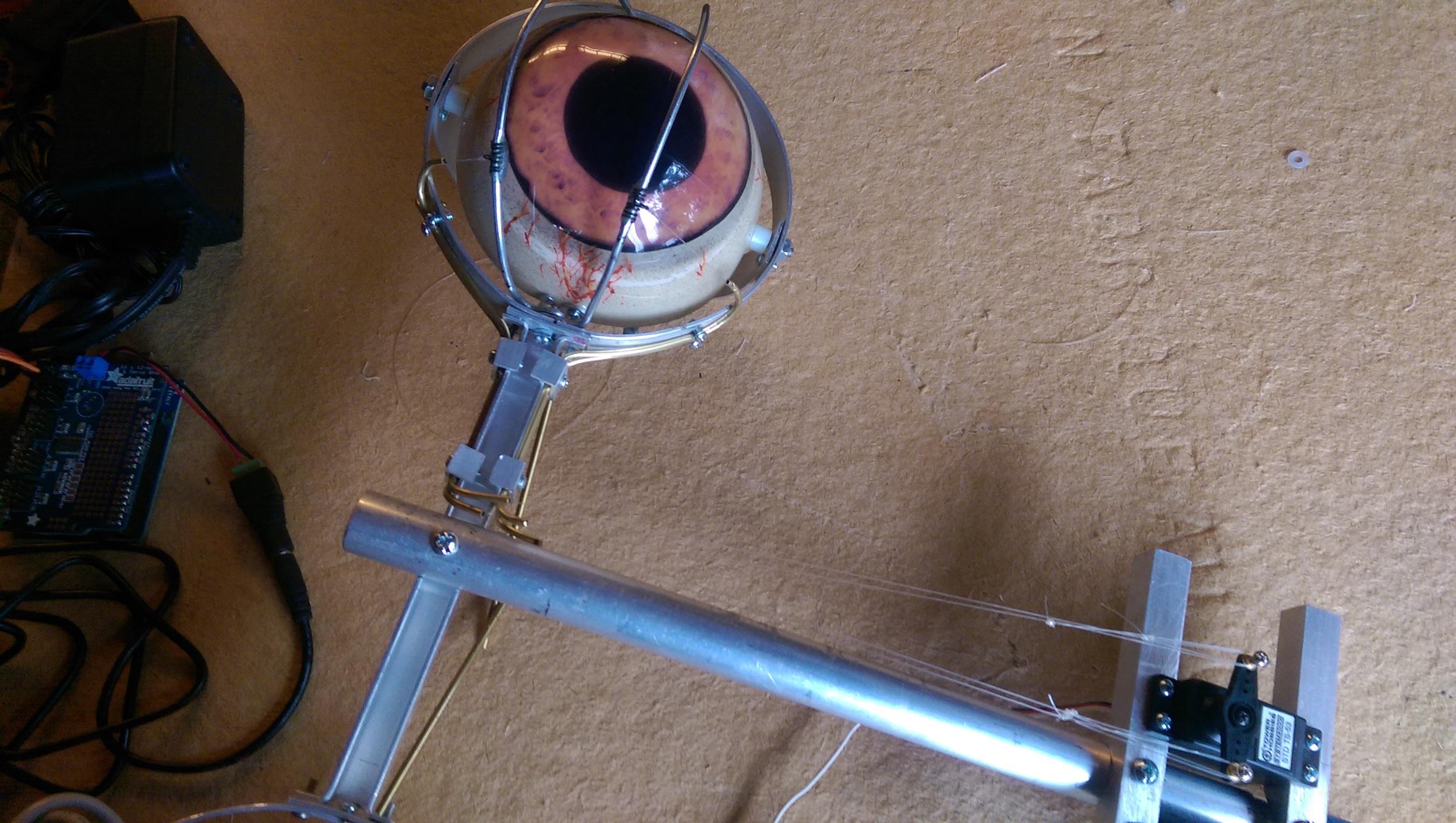 The final eye blink mechanism for the left eye ofthe Ithorian