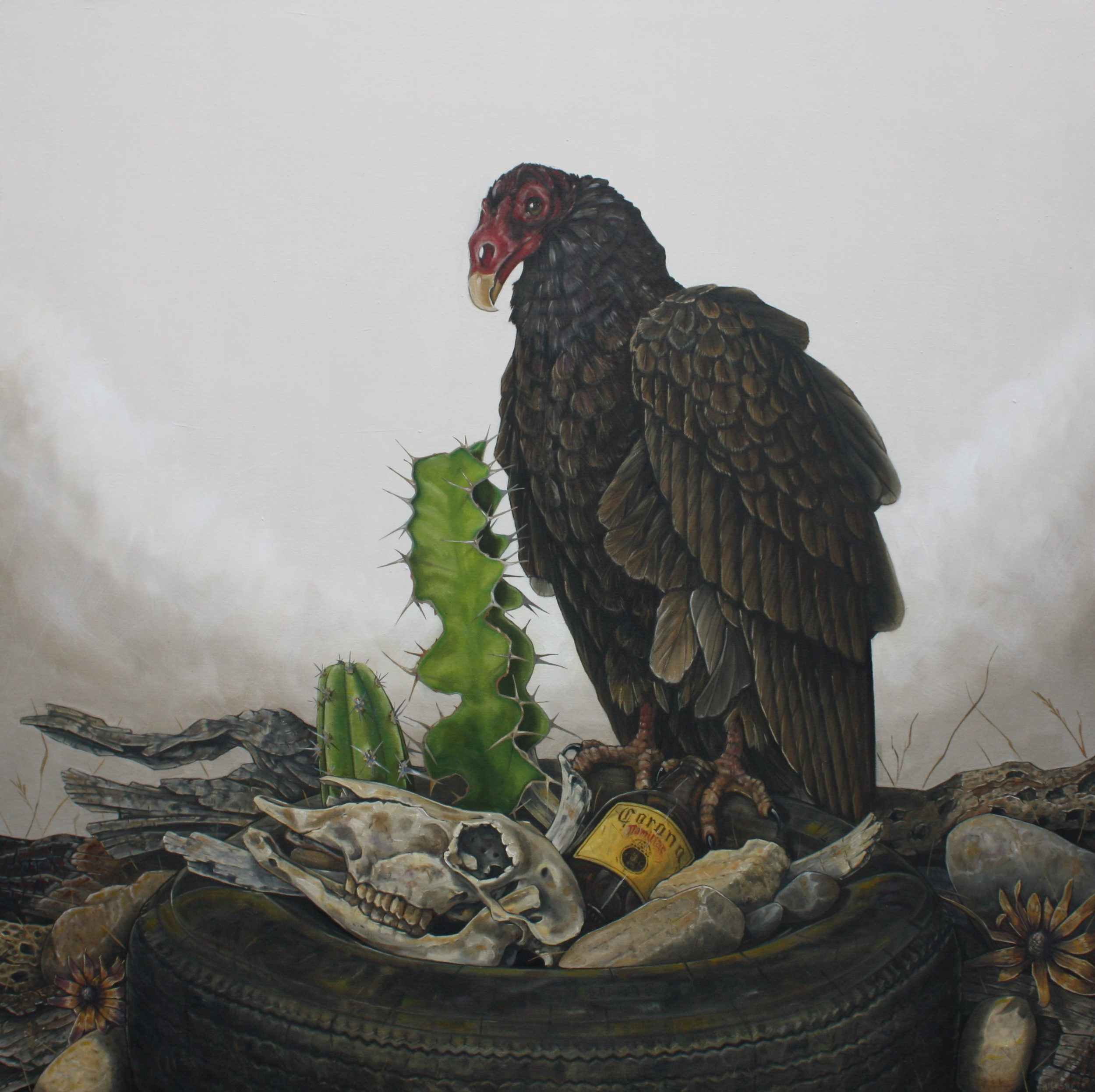 Baja . Oil on Canvas . 32 x 32