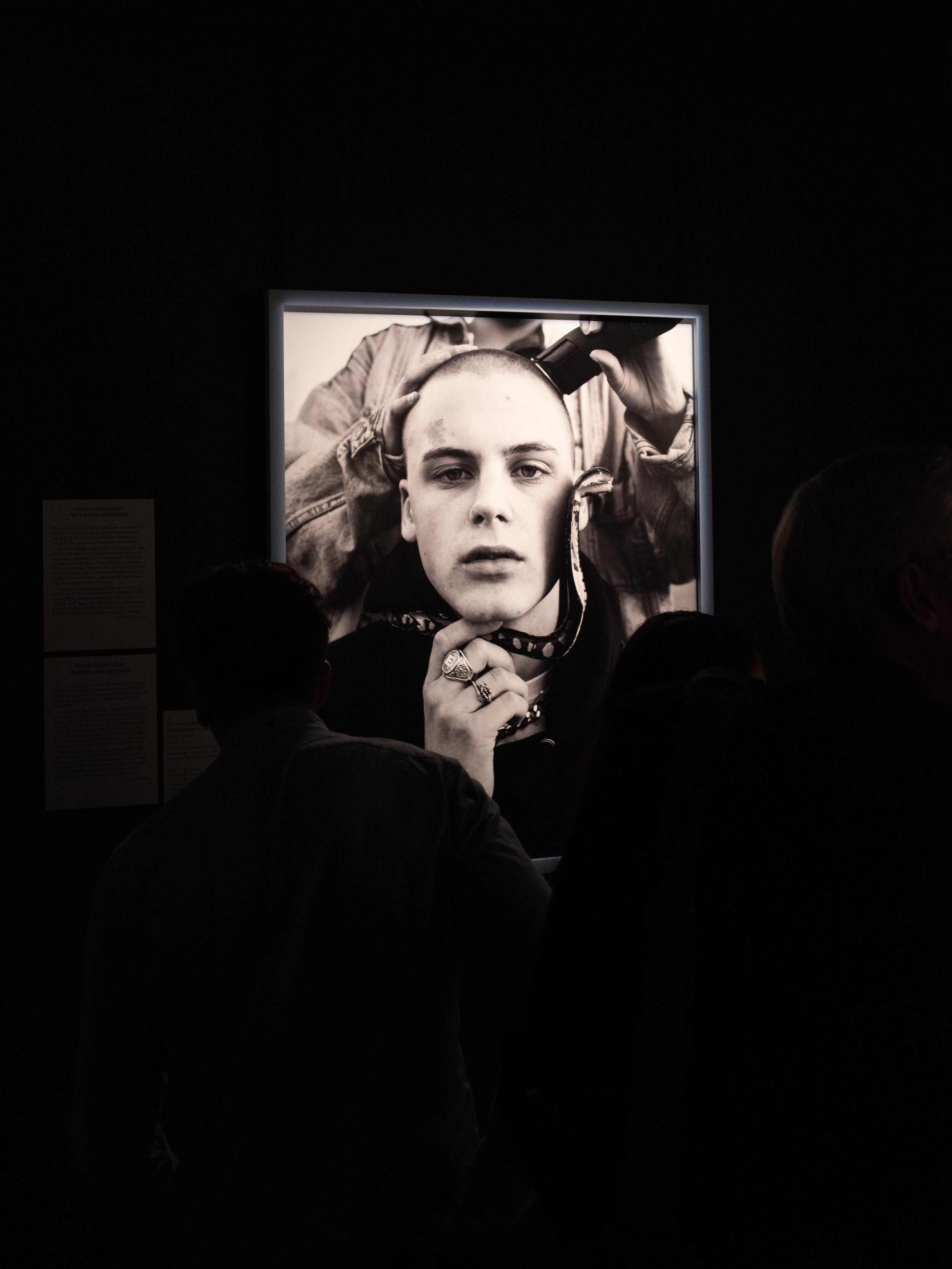 """""""Terms"""" Portrait now! exhibition at Nationalhistorisk museum Fredriksborg Castle"""