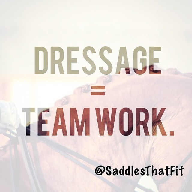 #dressage #dressagerider #horses #love #happiness #horsesoninstagram #olympics #perfection #team #saddlethatfits