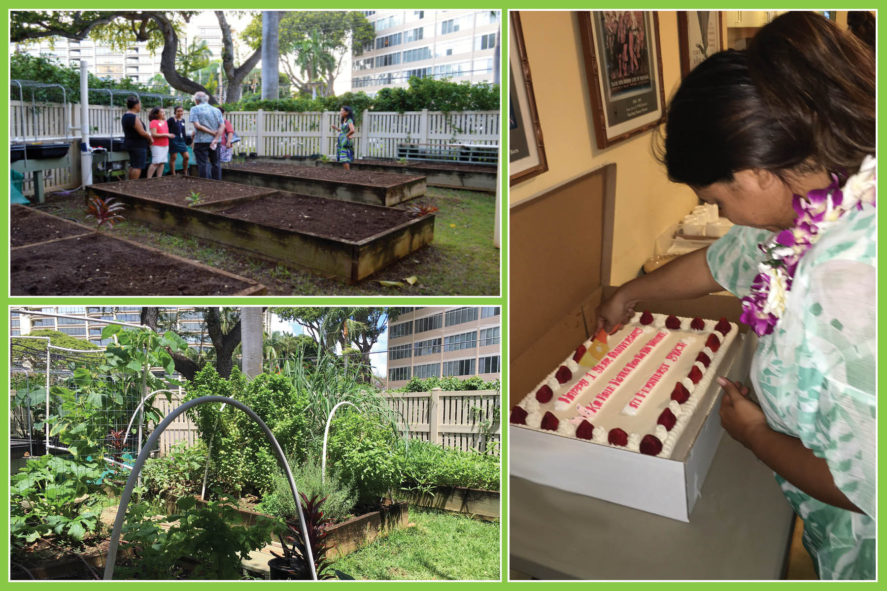 (Top left) YWCA O'ahu invited supporters to an Open House at Fernhurst YWCA last October and the photo below shows the growth of the Fernhurst community garden, overflowing with sweet potato and lemongrass. (Right) Fernhurst YWCA Program Manager Talia Cardines cut the cake at the one-year anniversary celebration of Ka Hale Ho'āla Hou No Nā Wāhine at YWCA O'ahu.
