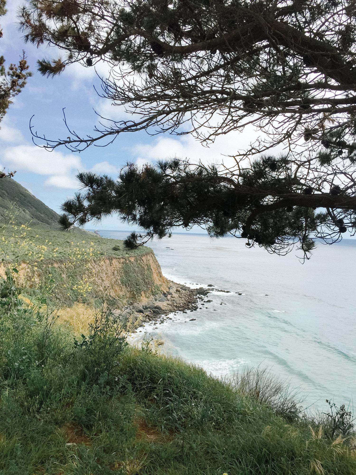 pacific_coast_road_trip-11.jpg