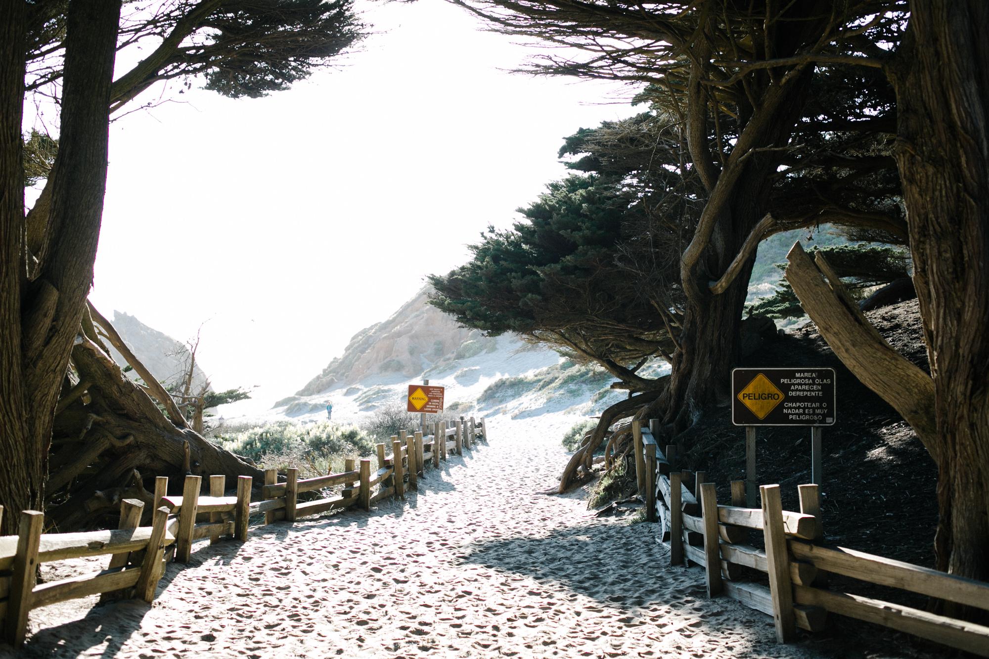 pacific_coast_road_trip-16.jpg