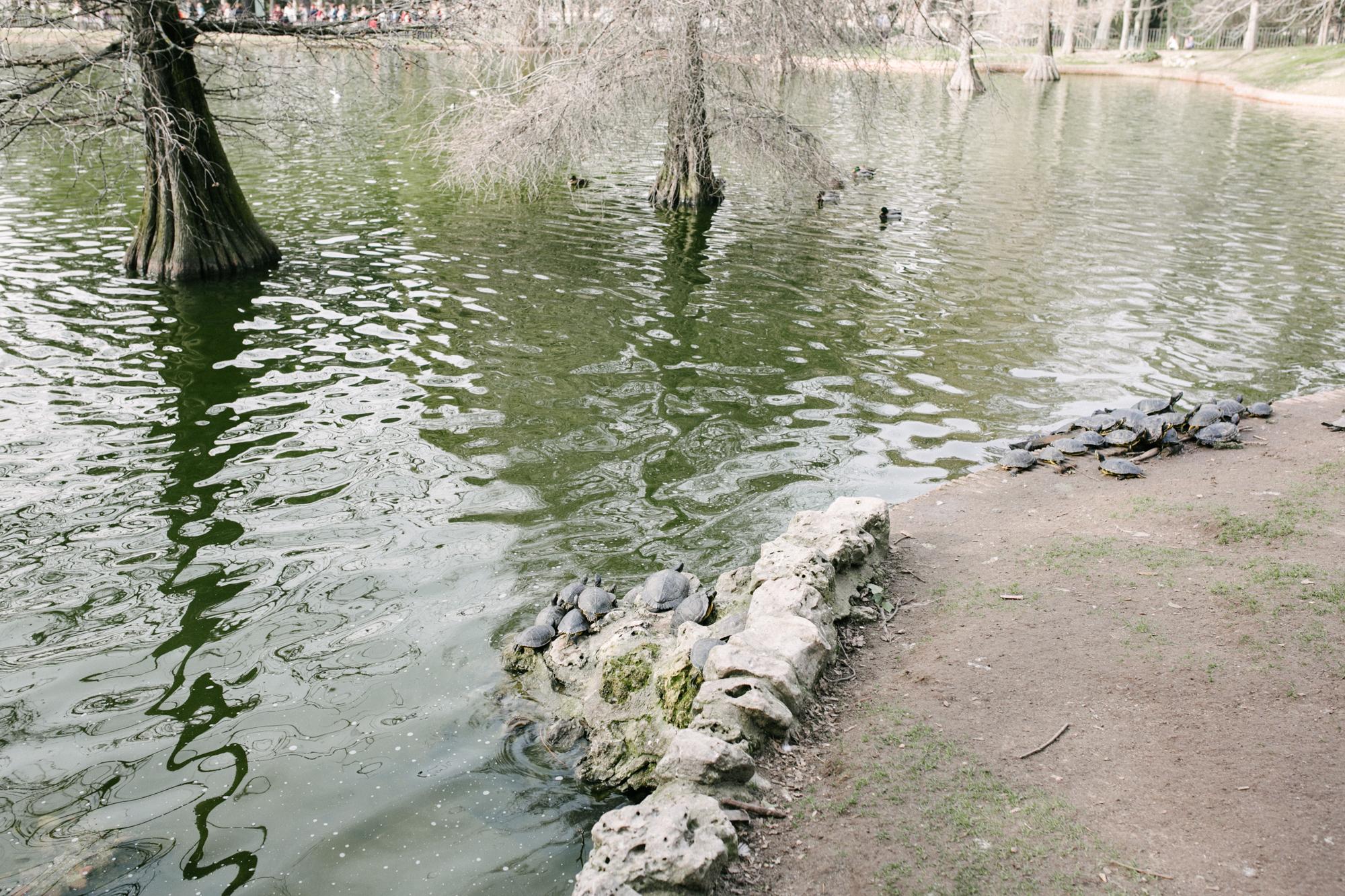 MADRID_VALENCIA_BELGIUM-7.jpg