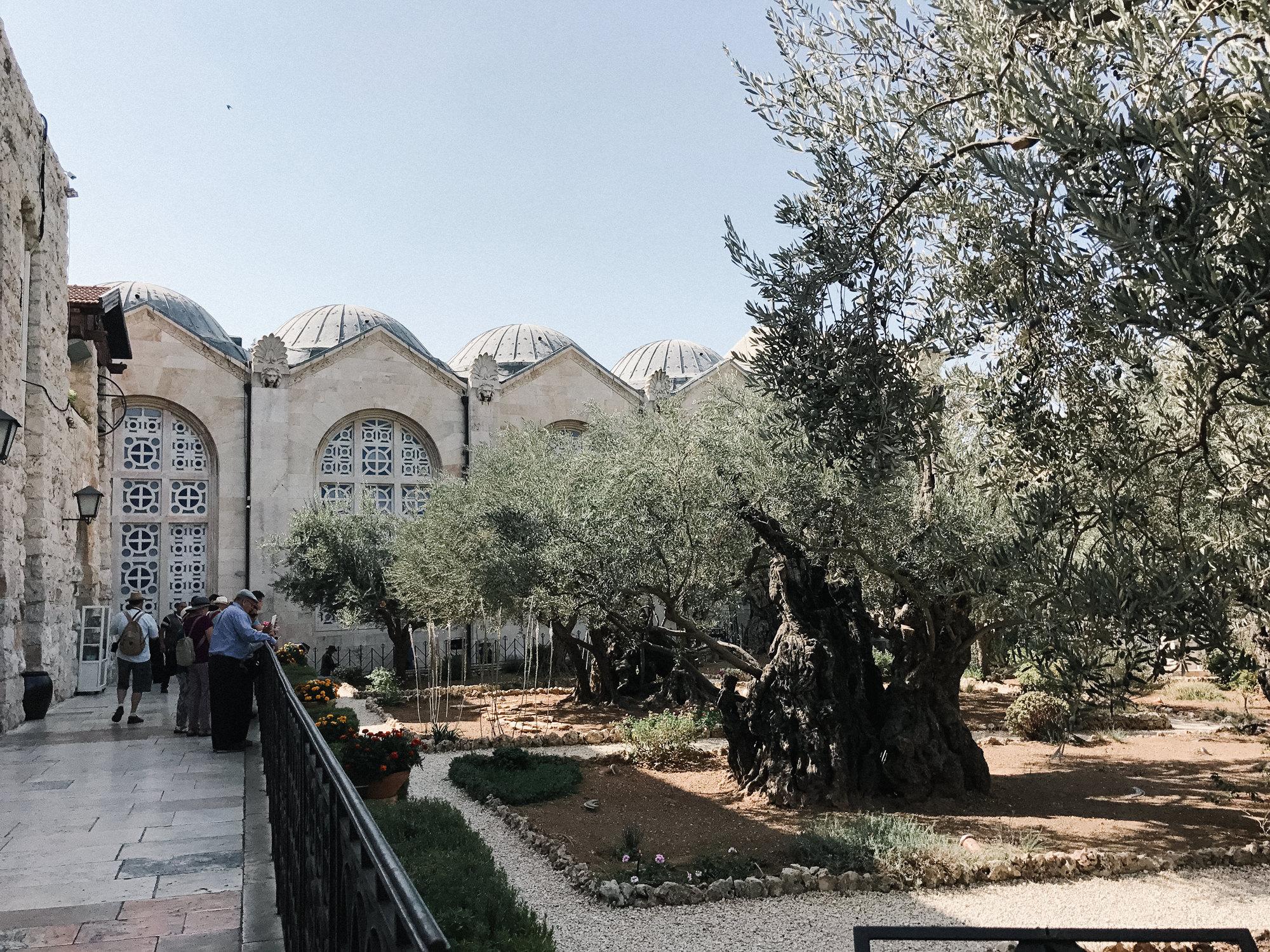 israelblog-64.jpg