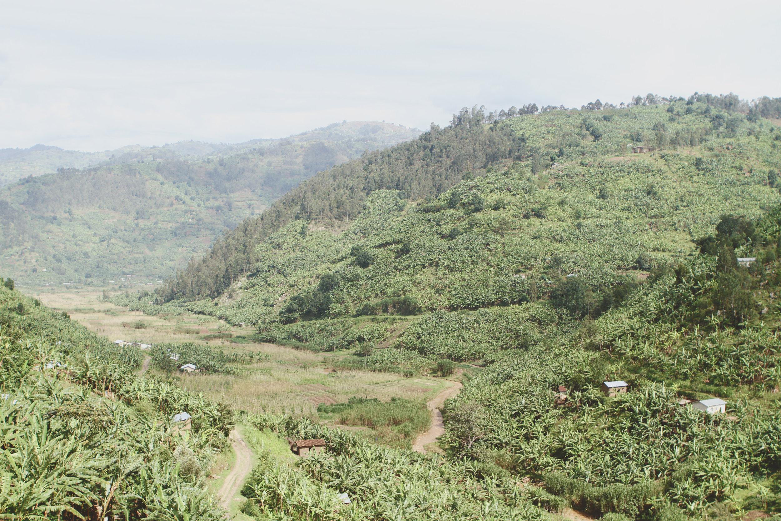rwanda11.JPG