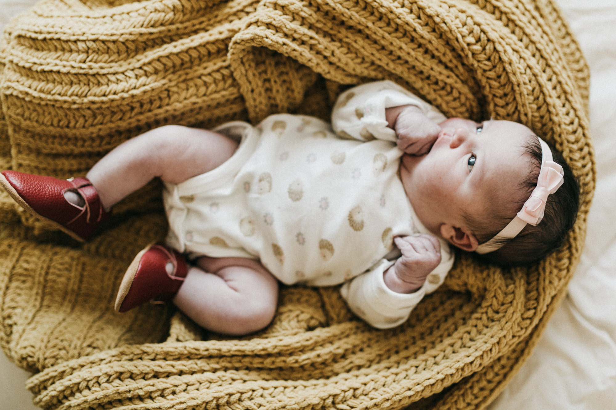 Brea Newborn Photographer