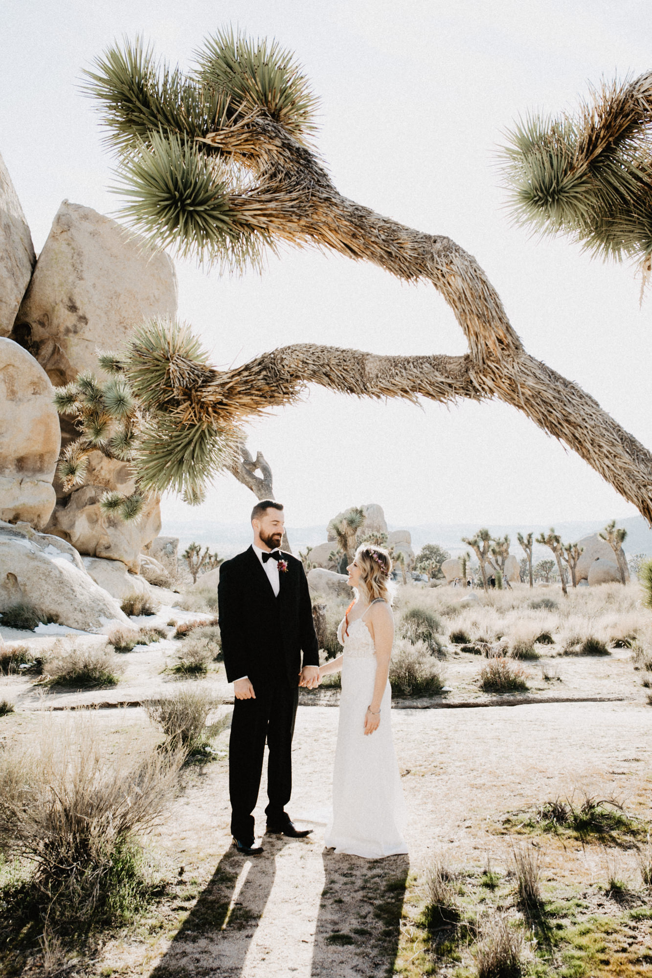 rimrock ranch joshua tree wedding -35.jpg