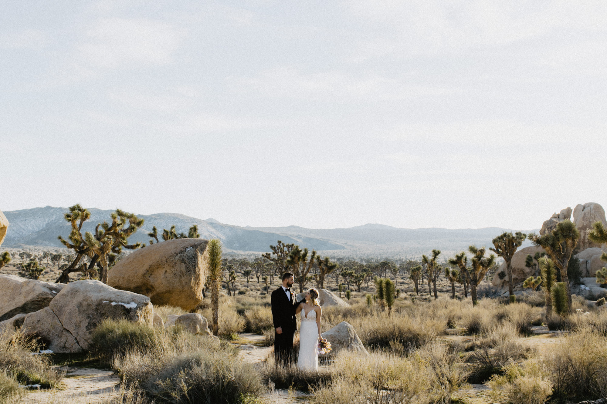 rimrock ranch joshua tree wedding -53.jpg