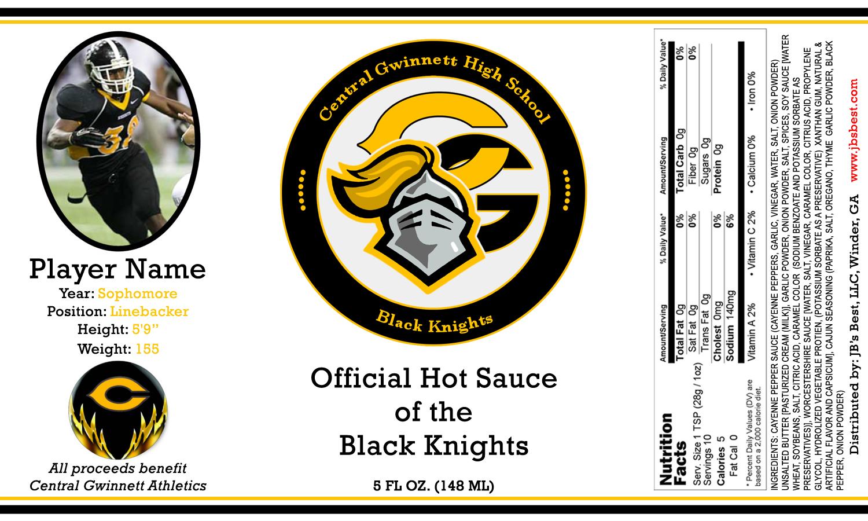 central-gwinnett-black-knights-image