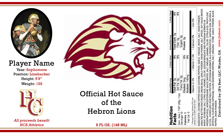 hebron-christian-academy-lions-image