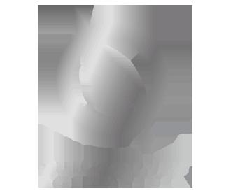 Quicksilver Scientific logo_big.png