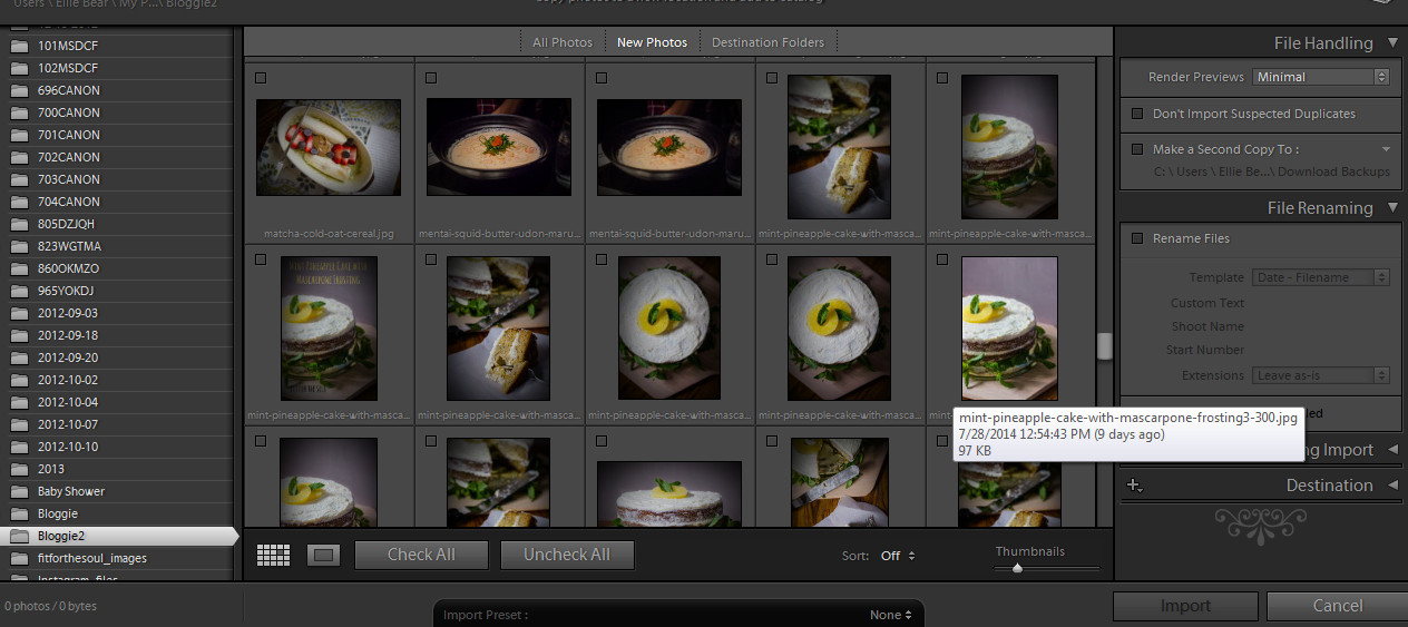 how-to-improve-photos-with-lightroom4